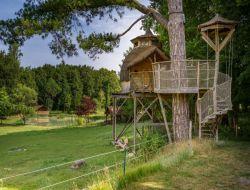 Hébergements insolites à louer en Indre et Loire