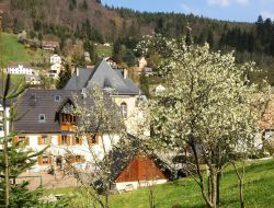 Holiday cottage near Colmar in Alsace. near Ban de Laveline