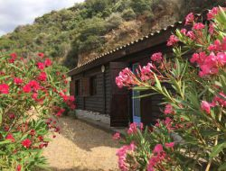 Seafront holiday rental in Corsica. near Sagone