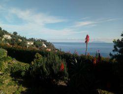Gite a louer près de Bastia en Corse.