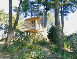 Unusual stay in perched hut in Loire Atantique.