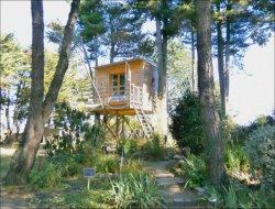 Séjour insolite en cabane sur pilotis près de Nantes