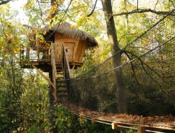 Unsual stay in a tree house in Nouvelle Aquitaine. near Gémozac
