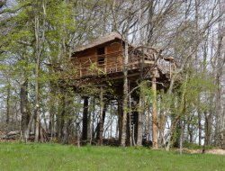 Unusual holiday in a tree house in Ardeche near Saint Julien Labrousse
