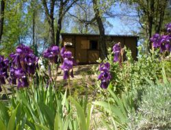 air conditioned holiday home in the Gard, Languedoc Roussillon, France. near Mons