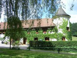 Holidays in Alsace near Dambach la Ville