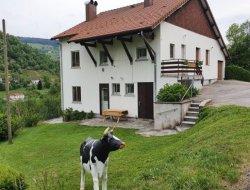 Grand chalet a louer a la Bresse 88