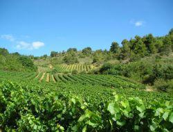 Gîte rural à louer dans l'Aude