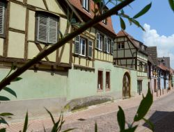 Holiday cottage near Colmar in Alsace