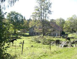 Gite et ferme equestre dans le Jura (39)