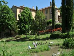 Holiday rental and guest house near Saint Maximin