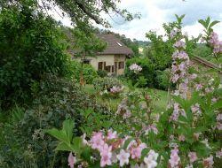 Gite pr�s de Montignac en Dordogne