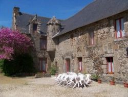 Holiday cottage close to St Malo near Baguer Morvan