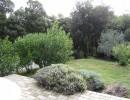 Gite en location dans le Vaucluse