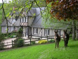 B & B in Normandy