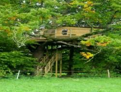 Location de cabanes perch�es dans le Calvados