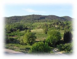 Cottage for holidays in Provence near Bédoin