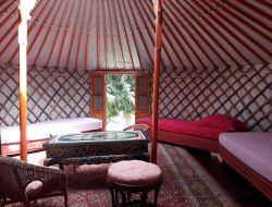 Stay in Yurt in Brittany