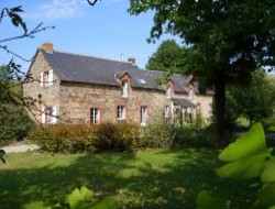 B&B in Le Petit Fougeray n°9791