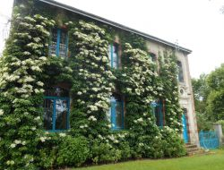 B&B in the Limousin, France. near Pouligny Notre Dame