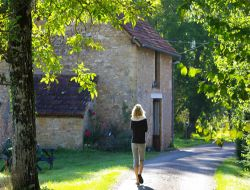 Holiday accommodations close to Montignac in Perigord near Lachapelle Auzac