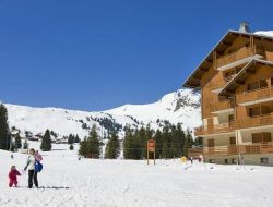 Holiday rentals in alps ski resort