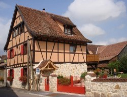 Cottage for holidays in Alsace.