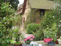Holiday cottage between Normandy and Picardy